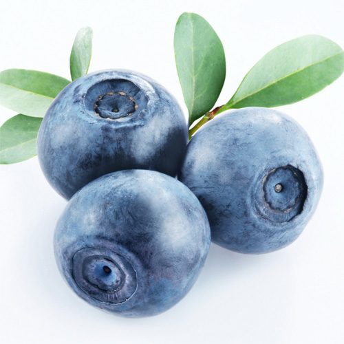 Blueberry (Yaban Mersini)